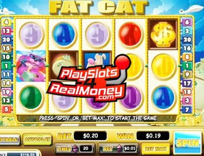 Fat Cat Online Slots Review At Miami Club Casino