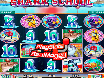 Shark School Slots review
