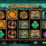 Exotic Cats Online Slots Goes Live as the Latest Offering from Microgaming