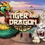 red rake gaming tiger dragon