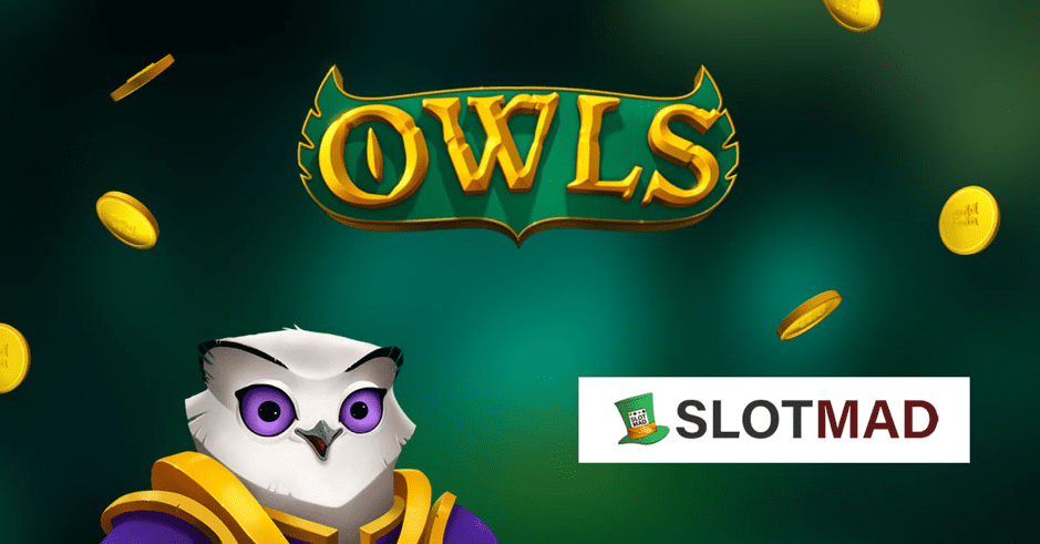 SlotMad Hosts Win Big on Nolimit City's Owls