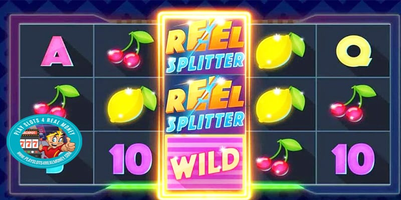 Microgaming reel splitter classic slot