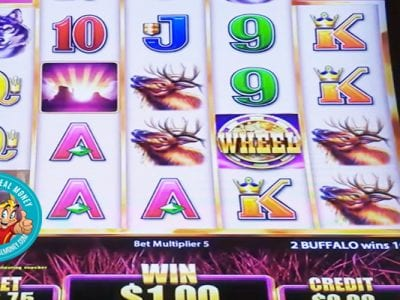 Buffalo Grand Slots Review Aristocrat